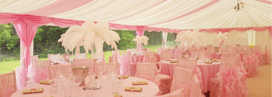 pink-902x330